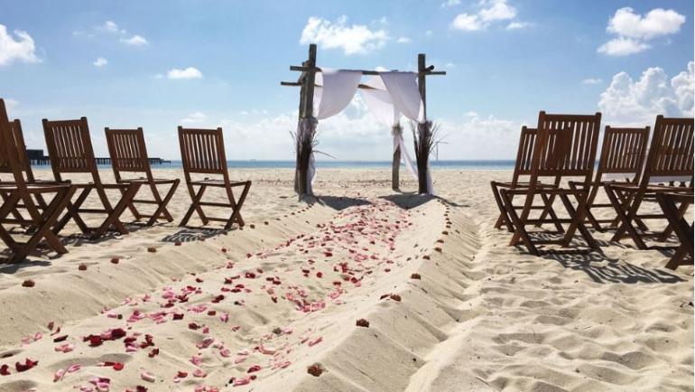 park hayatt wedding